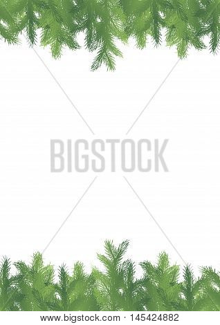 Seamless pattern border with green fir brunches on a white background