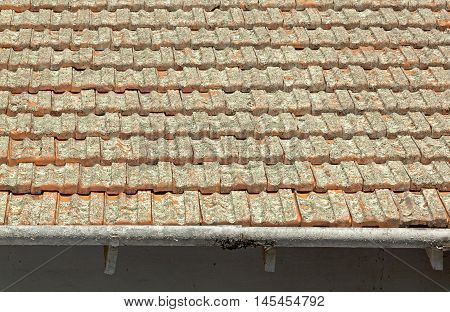 Clay Roof Tiles Covered In Lichen With Peeling Gutters