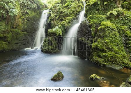 An image of a beautiful woodland waterfall shot with a slow shutter speed to give a milky effect of the water, Venford Brook Devon England UK