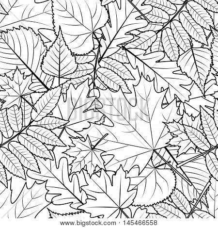 Vector Autumn Leaves Seamless Pattern. Black And White Background.