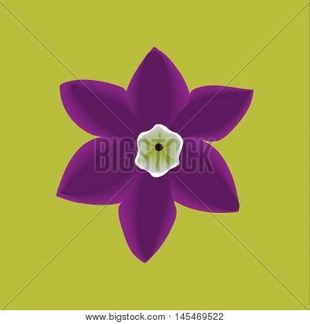 Lily flowers. Blooming lily. Silhouette of lily flowers  isolated on violet  background. Vector illustration.