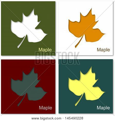 maple fall autumn background fallen leaves shedding leaves
