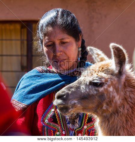 Native Peruvian Woman With A Llama