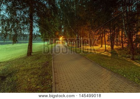 Path In Evening