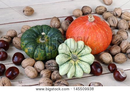 Still life with products of autumn - pumpkins and gourds