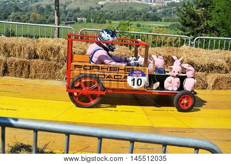 CLUJ-NAPOCA ROMANIA - SEPTEMBER 3 2016: unidentified racer drives a diy racecar with toy pigs down the racetrack at the Red Bull Soapbox Race