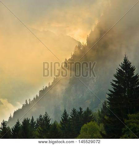 Sunrise Over Mountain Ridge With Pines