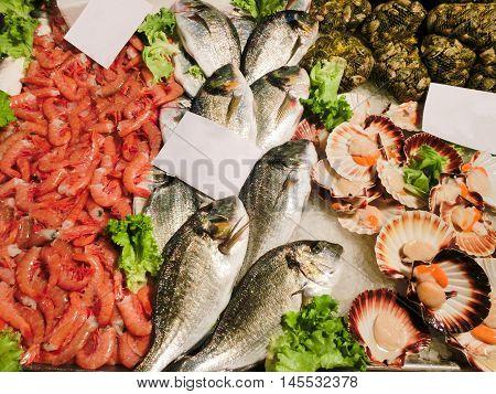 Venetian fish market - dorados and prawns. The Rialto fish market is located alongside the Grand Canal near the Rialto Bridge - Venice, Italy