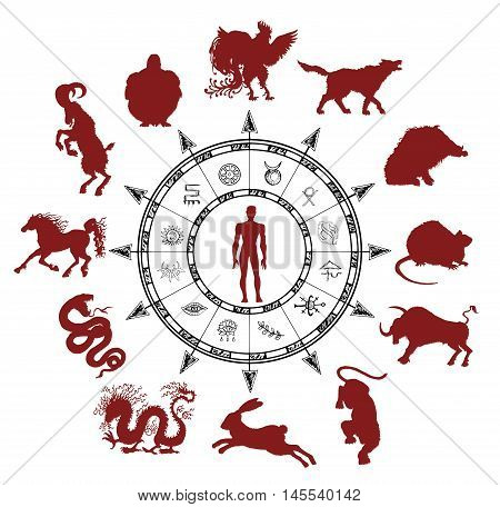 Astrology chart with silhouettes of chinese zodiac animals, human and mystic symbols. Asian new year calendar signs.  Graphic set with hand drawn esoteric and occult illustrations
