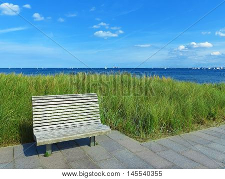 wooden bench lyme grass and view to the sea