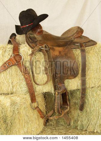 Saddle & Hat