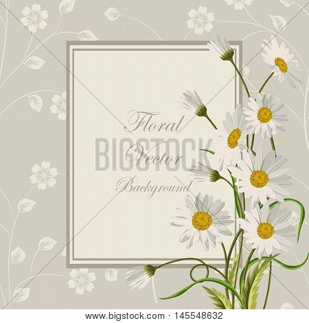Floral vector background. Square frame with beautiful white daisies on gray background with pattern.