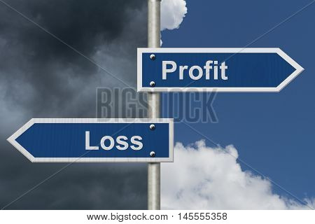 Profit Versus Loss Two Blue Road Sign with text Profit and Loss with bright and stormy sky background, 3D Illustration