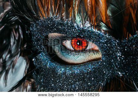Male Eye In Dark Mask