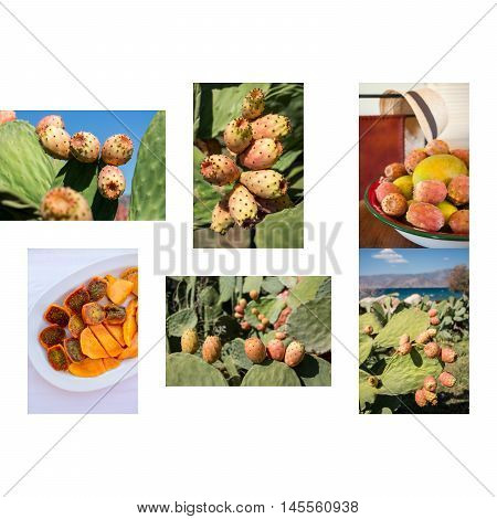 6 phothos collage of ripe prickly pear cactus fruits growing cut and ready to eat salad of its and mango on white background. Six photos collage of mango and prickly pear cactus fruits salad.