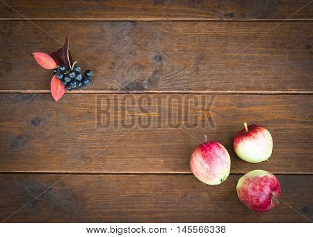 Three apples on the old wooden floor and empty space for text. Concept back to school