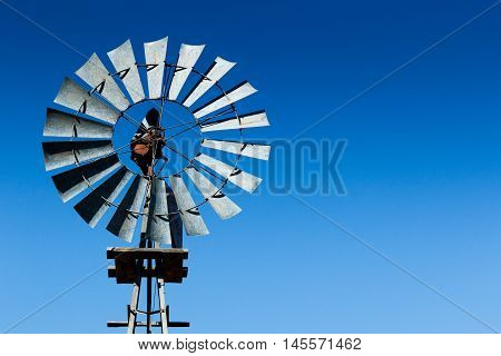 Windmill At The Mountain Zebra National Park