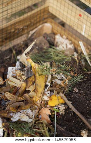 Image of compost bin in a garden