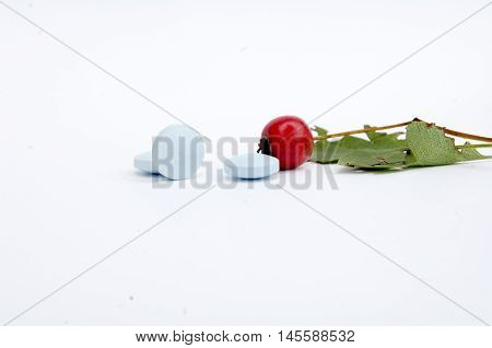picture of a blue pills and hawthorn berry . health concept