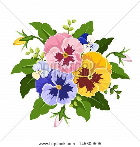 Vector pink, yellow and purple pansy flowers isolated on a white background.