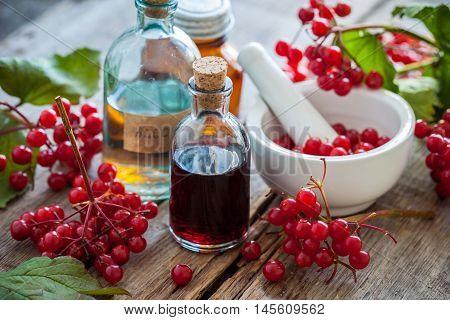 Bottles Of Guelder Rose (red Viburnum) Tincture And Mortar Of Healthy Berries, Herbal Medicine. Sele