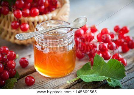 Jar Of Honey And Guelder Rose Or Viburnum Berries. Selective Focus.