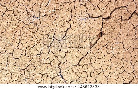 Drought, The Ground Cracks