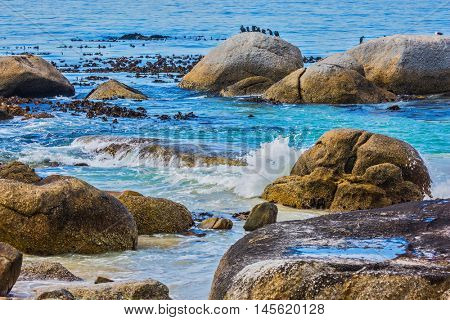 The concept of ecotourism. Huge boulders on the beach of the Atlantic Ocean. Boulders Penguin Colony in the Table Mountain National Park, South Africa