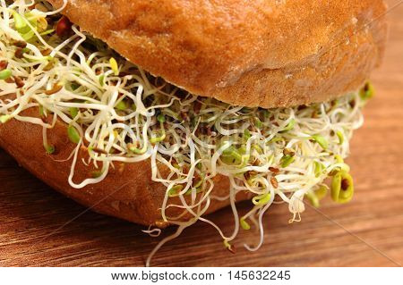 Wholemeal Bread Roll With Alfalfa And Radish Sprouts