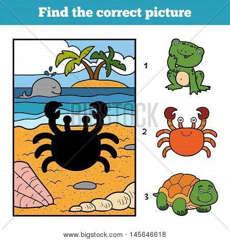 Find The Correct Picture. Little Crab And Background