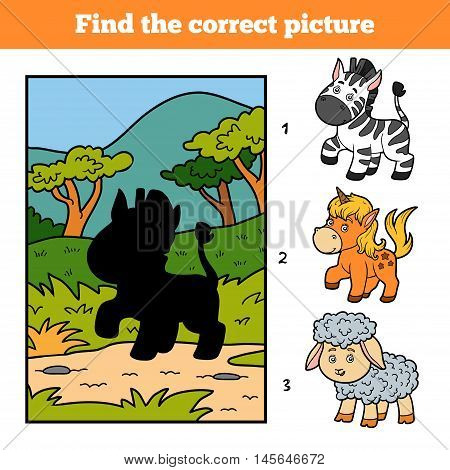 Find The Correct Picture. Little Zebra And Background