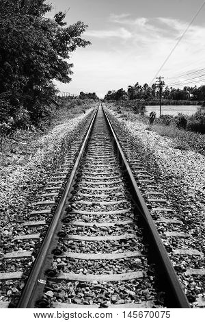View Of Straight Railway With Tree At Side Of Railway,black And White Color Picture Style,selective