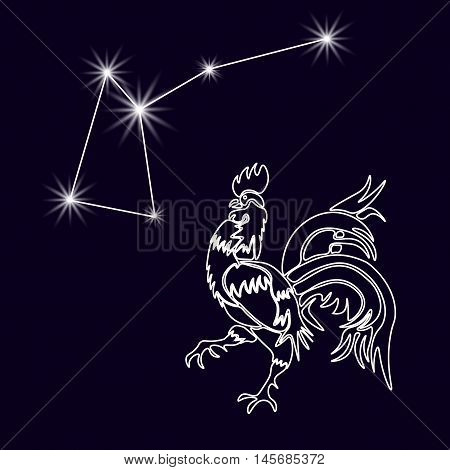 Rooster Constellation. Realistic star. White cock, rooster 2017. Horoscope. Tattoo. Made with a predominance of white on a dark background. Vector illustration