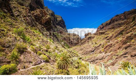 beautiful aerial view of the famous canyon Masca in Tenerife Canary islands Spain