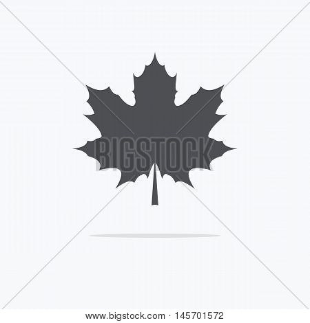 Maple Leaf. Silhouette of the maple leaf. Icon of a maple leaf. Vector illustration.