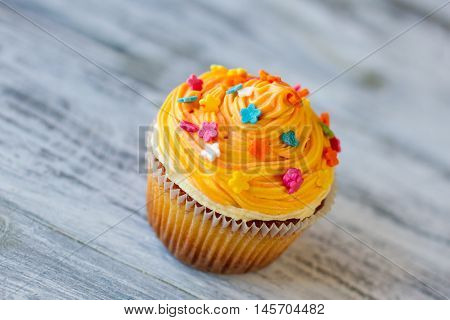 Cupcake on gray wooden background. Small dessert with orange cream. Find a recipe of joy. Color and flavor.