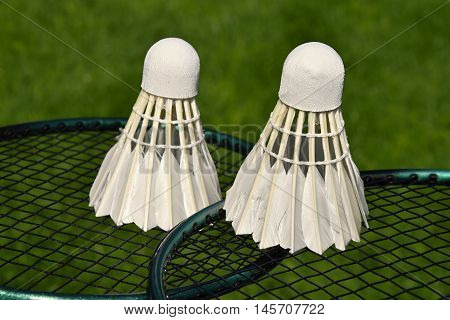 Two shuttlecocks on racket outdoors on green grass just before badminton play