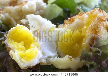 scrambled eggs fried eggs egg yolk protein food