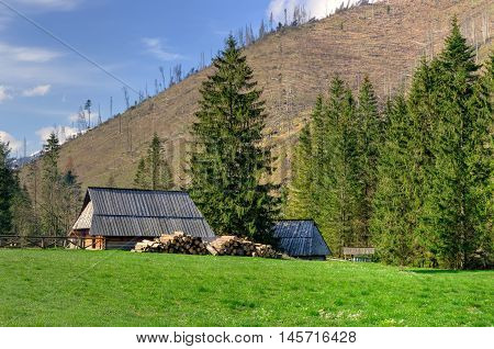 Spring mountain landscape. Wooden hut in Koscieliska Valley in Tatra Mountains Poland.