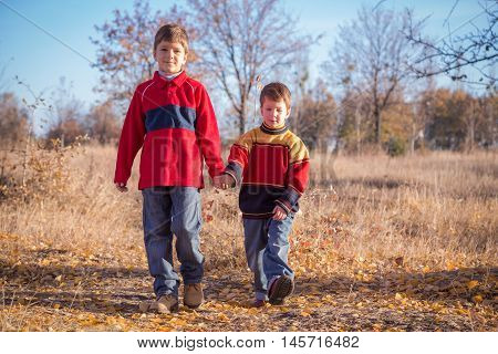 Two boys walking on withered grass in autumn park