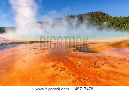 Thermal pool Yellowstone Grand Prismatic Spring, Wyoming - USA