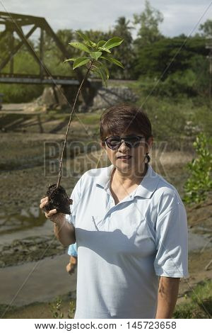 mature woman holding a young mangrove tree on a hand,filterd image,selective focus