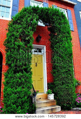 Baltimore Maryland - July 24 2013: Federal era home with Arborvitae arch flanking the doorway on Montgomery Street in the Federal Hill National historic district *