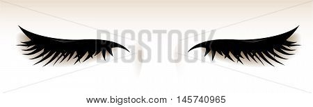 Closed eyes with big lashes. Isolated illustration. Vector.