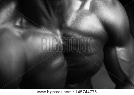 Human Male's chest in black and white