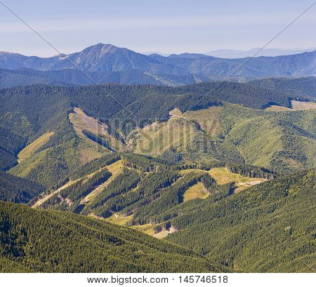 Panorama of Carpathian mountains in summer sunny day with results of deforestation