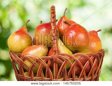 pears in a wicker basket with a blurred background.