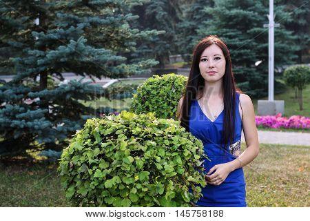Girl in blue and ornamental shrub. Professional model