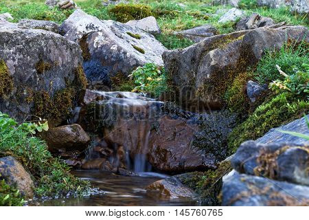 Creek In The Woods. Cascade Falls Over Rocks