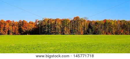 Panoramic photo of hay field with colorful autumn trees.